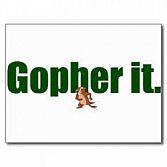 2008 Oprichting Gopherit