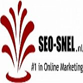 Online marketing Gouda SEO SNEL